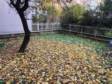 4 Postes en Open Space avec jardin-1